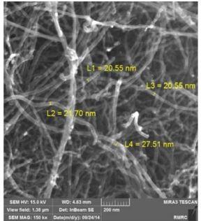 شکل 1 –تصویر میکروسکوپی الکترونی روبشی نشر میدانی از نانو لوله های مورد استفاده در این تحقیق .